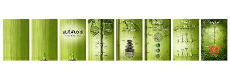 SINA Annual Report H5